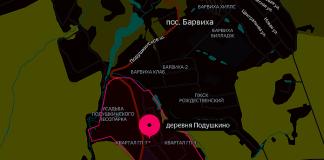 Деревня Подушкино
