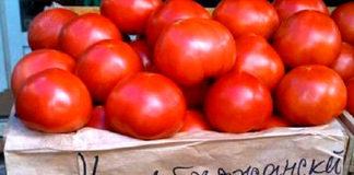 Азербайджанские томаты